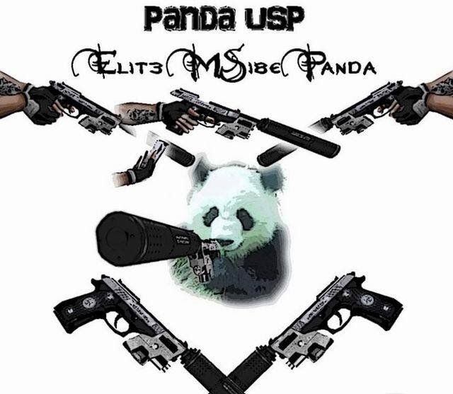 CS Addons: Panda-USP