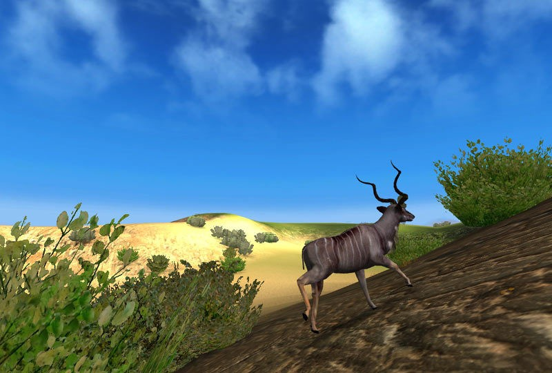 Hunting Games - Play Free Hunting Games Online